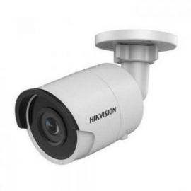 Camera IP DS-2CD2035FWD-I